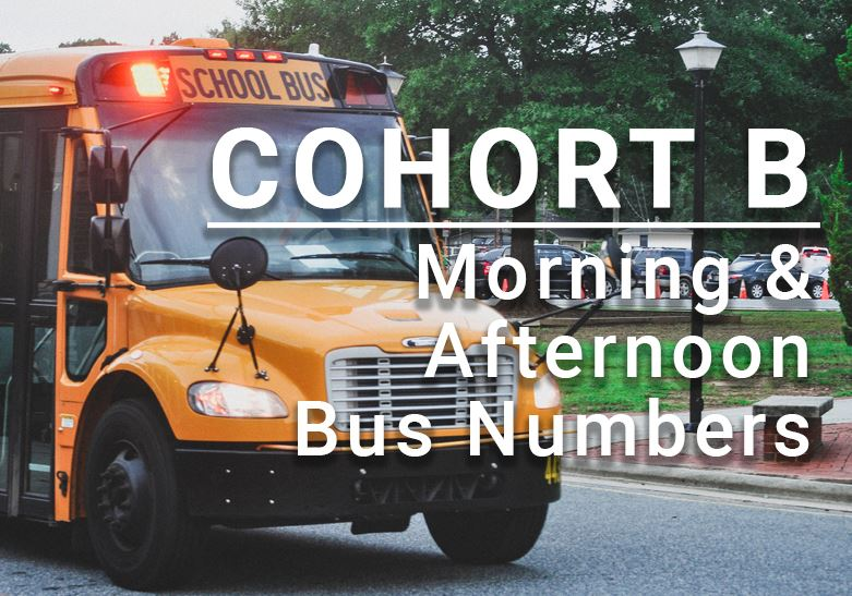 Cohort B Bus Information